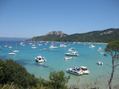 Porquerolles Island (photo : Plan Bleu)