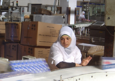 According to the study, immigrant networks have the effect of increasing trade between France and Egypt by between 10% and 20% (photo : F.Dubessy)