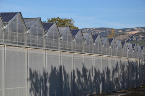 Solar greenhouses in Provence (photo : F.Dubessy)