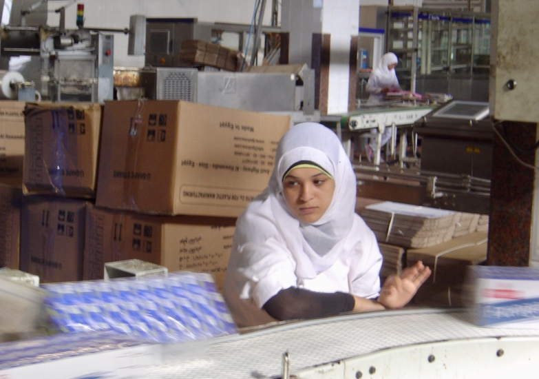 The study shows that in Egypt the pay gap could go up to 48% for the same job. ©F. Dubessy