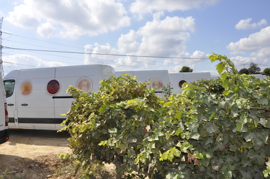 Vila Viniteca has its own fleet of fifteen vehicles for deliveries in Catalonia (photo DR)