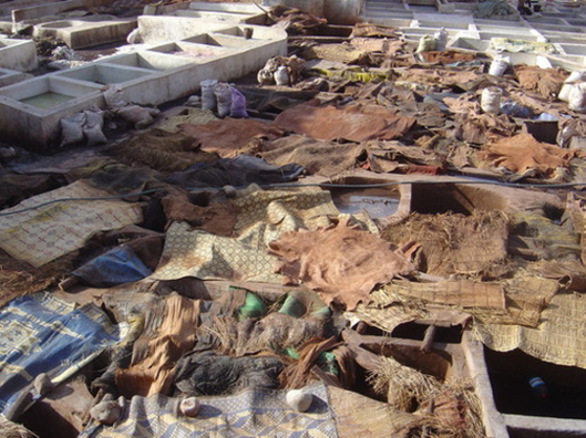 Cost of labour in MENA countries (here a tannery in Morocco) is a handicap compare to Asian developping countries (photo FD)