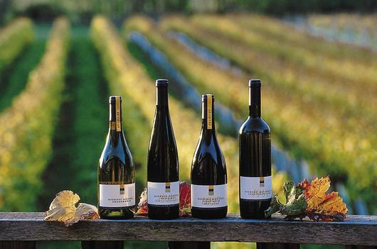 Wine should be traceable from producer to consumer (photo: DR)