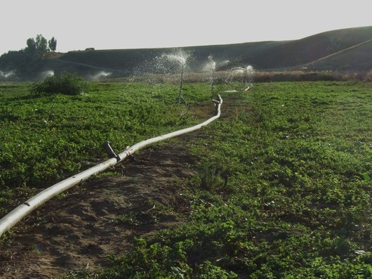 The Green Morocco programme could help farmers to better organise their production and look for alternatives to road transportation. (CG) .