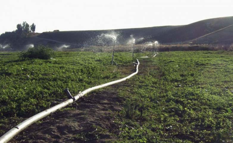 Irrigation policy remains uneven (photo: C.Garcia)