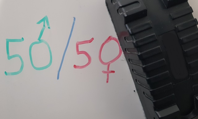 Gender equality, an equation that is hard to achieve (photo: F.Dubessy)