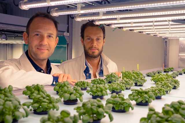 Gilles Dreyfus and Nicolas Séguy want to develop their vertical farming process in Europe (photo: Jungle)