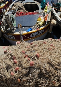 Revenues from artisanal fishing could rise by 2% or 4% if protection actions are strengthened (photo MN)