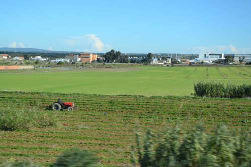 Tractor in the tunisian countryside. F. Dubessy