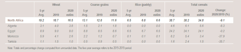 Cereal production has declined in North Africa. Figures in million tonnes. (table: FAO)