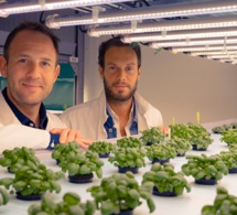 French agrotech Jungle raises €42 million to expand its roots in Europe