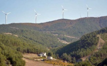 How are Mediterranean countries approaching the energy mix ?