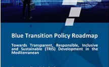 Emea and Emnes issue roadmap for blue transition in Mediterranean