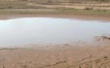 Flexible strategies in the face of water shortages