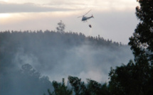 EU joins forces to better fight forest fires