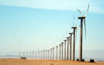 """Renewable energies and energy optimisation are the only way out for Egypt"""